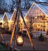Julkväll på Rosendals Trädgård