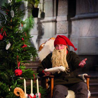 Experience swedish Christmas