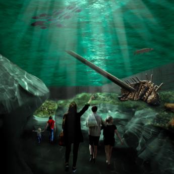 Djurgården välkomnar ett nytt marinarkeologiskt museum