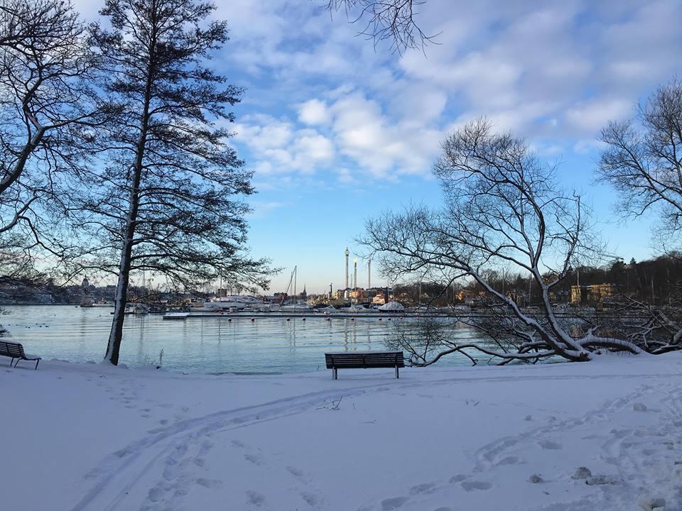 Äntligen är det sportlov på Djurgården!