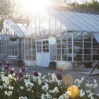 Plantboden på Rosendals Trädgård
