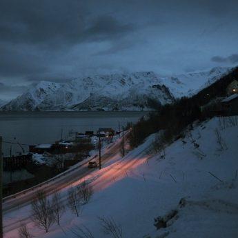 Arktis – ny utställning på Nordiska museet