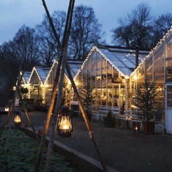 Jul på Djurgården 2020
