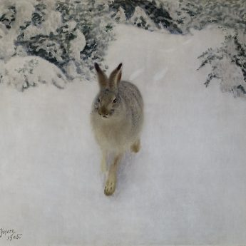 A family guided tour of Karin Frostenson`s exhibition and the Thiel art collection