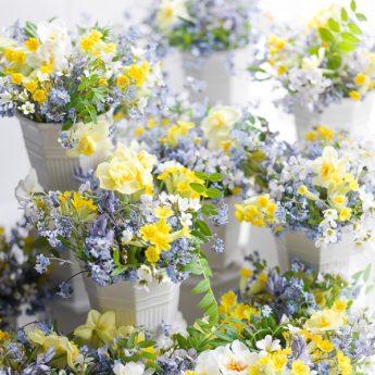 Waldemarsuddekrukan och en värld av blommor