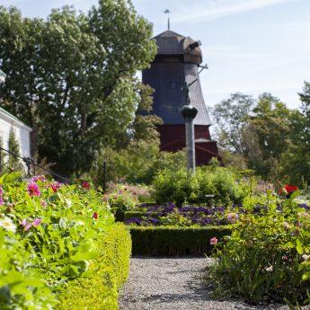 100 år av trädgårdshistoria