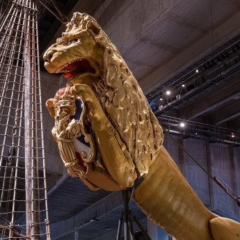 Exhibition: Vasa Up Close