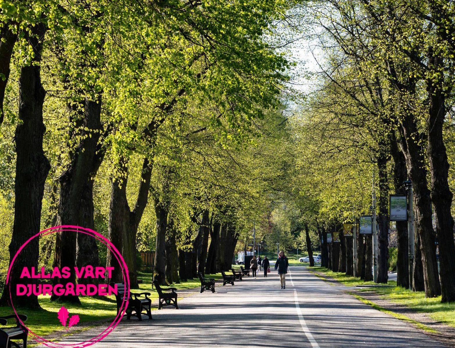 Promenadtips från Djurgården