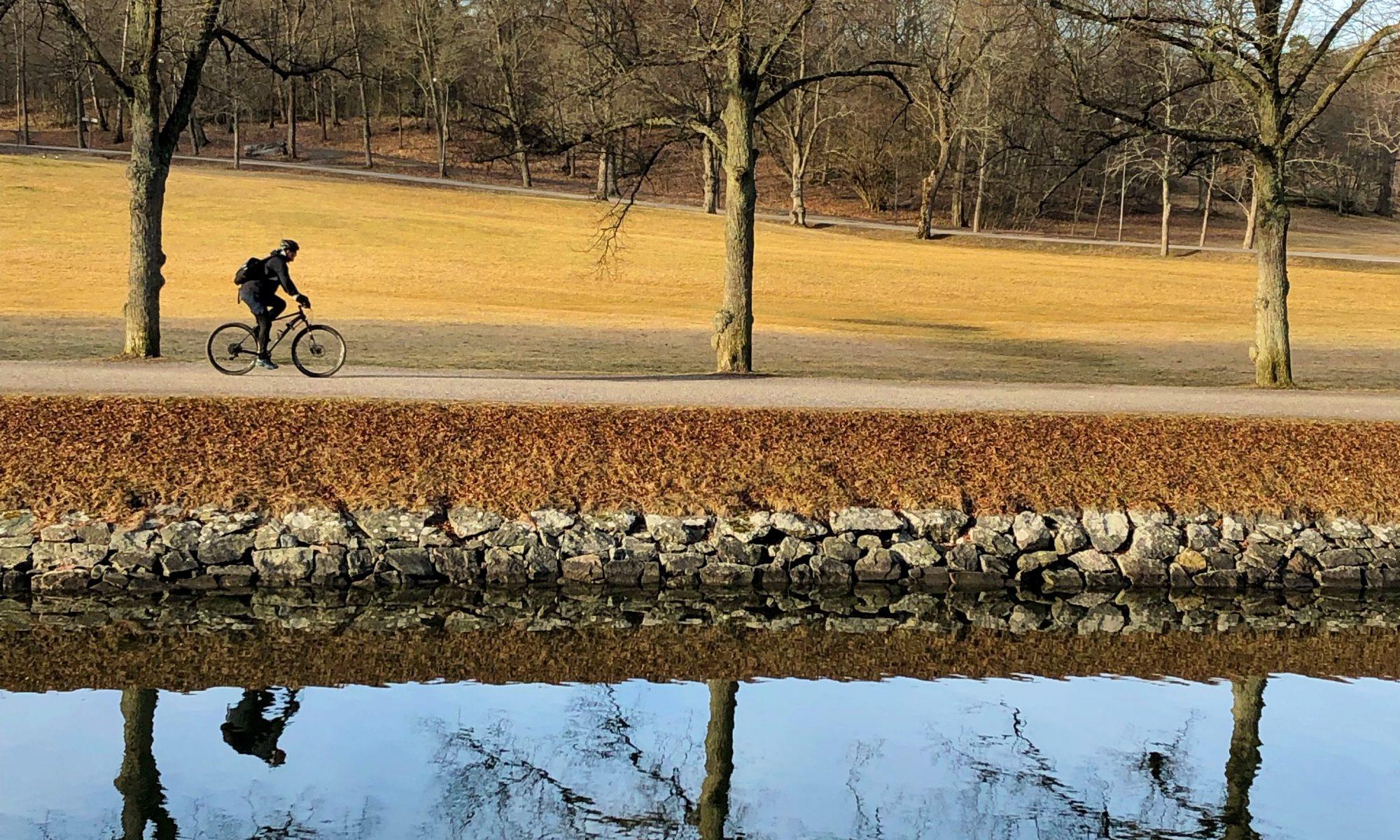 ensam cyklist, höst på Djurgården