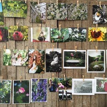 Fototävling för unga på Rosendals Trädgård