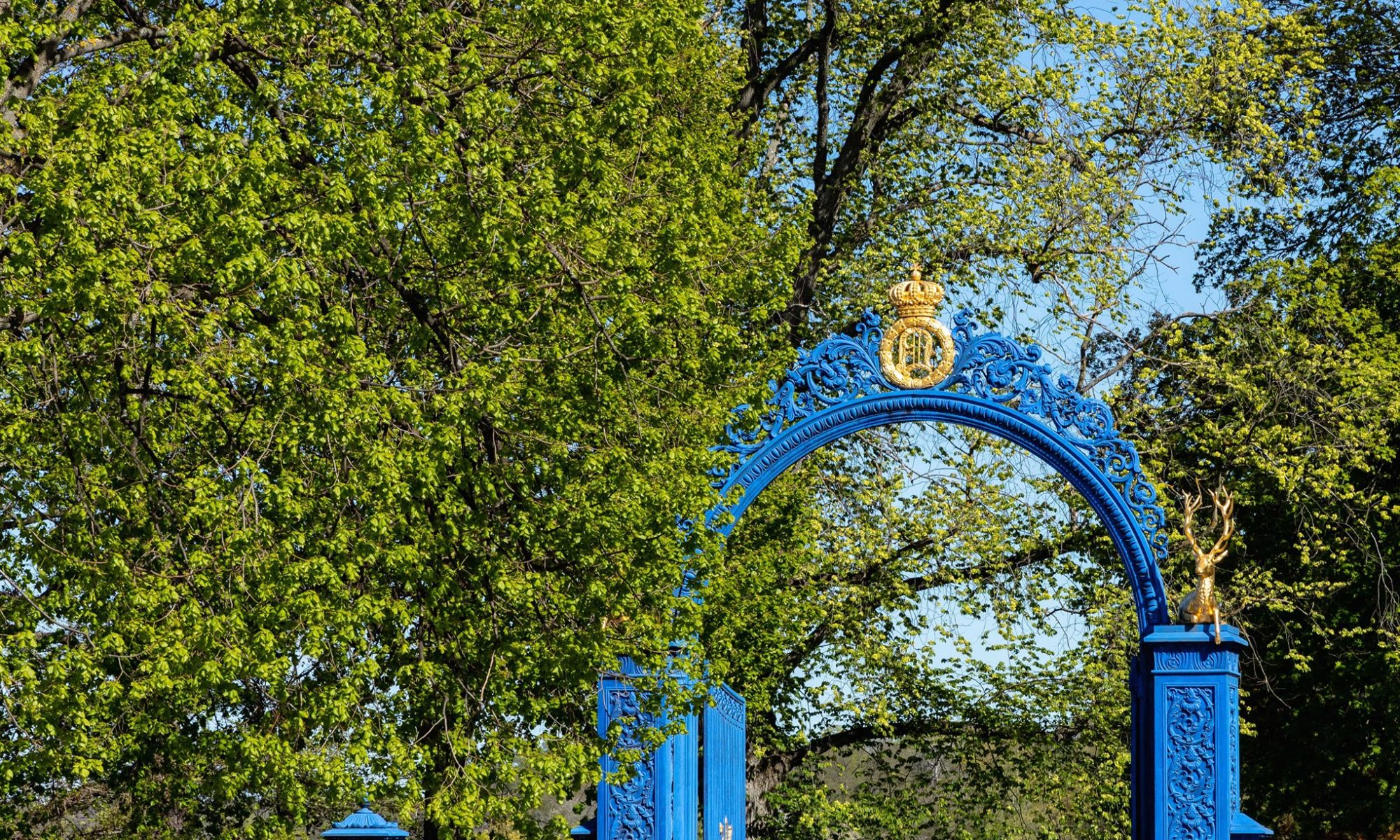 Summer at Djurgården: 8 things you don't want to miss!