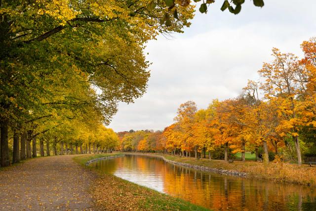 Guide: An Autumn Day at Royal Djurgården