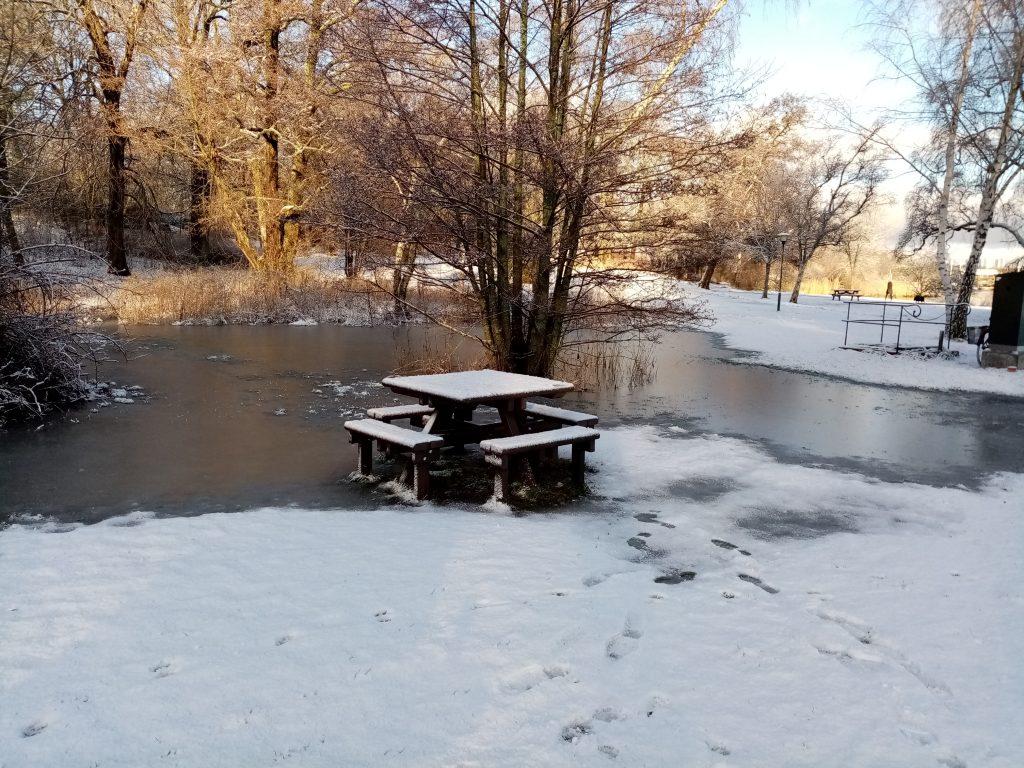 Fastfrusen bänk, ett tydligt bevis på att Djurgården klätt om till vinterskrud.