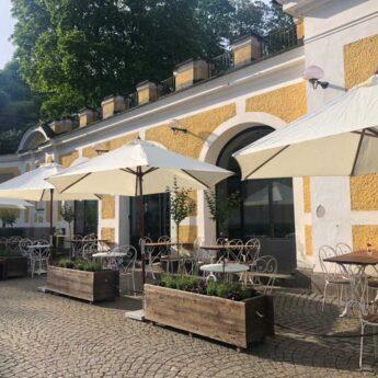 Djurgården får nytt kafé – Arturs kafé har öppnat vid Hazeliusporten!