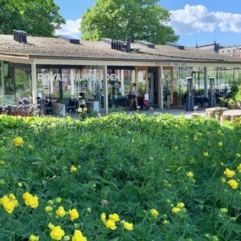 Vi söker turistbyråansvarig till Royal Djurgården Visitor Center, vikariat heltid